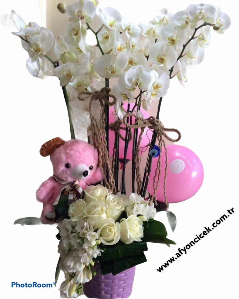 kız bebek orkide arajmanı