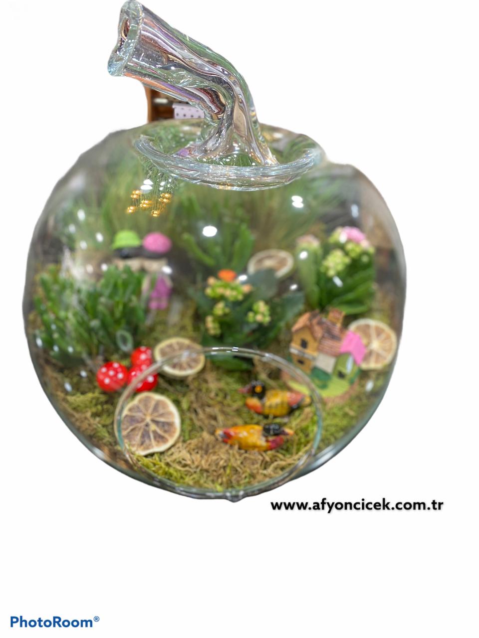 elma cam içersinde gizli bahçe